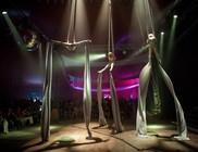 Új helyszín a Szigeten: Cirque du Sziget