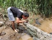 Nem mindennapi krokodil túra