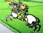 Fantasztikus alkotások a rizsföldeken