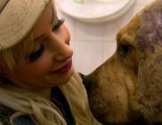 Kelemen Annától forog az állatvédők szeme...