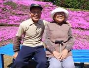 Több ezer virágot ültetett látását elvesztő feleségének az idős férfi