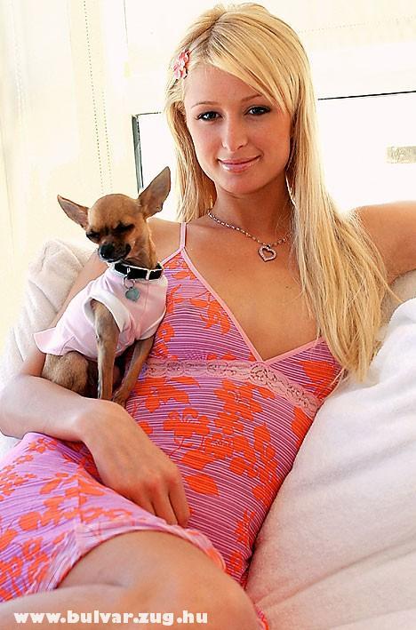 Paris Hilton és kedvenc ölebe