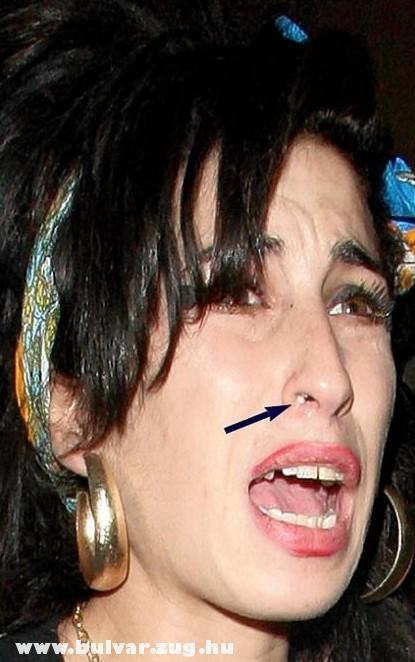 Amy Winehouse fikája