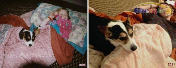 10 éves barátság a lány és a kutyus között