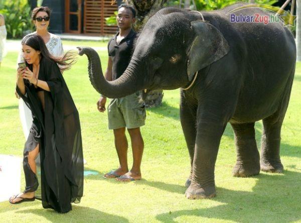 Kim Kardashian elefánttal akart pózolni, de az elefántnak nem volt kedve