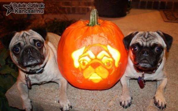 Halloweeni háromasikrek