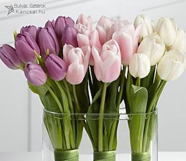 Tavaszi tulipáncsokor