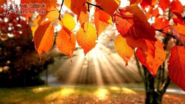 ősz, ősszel