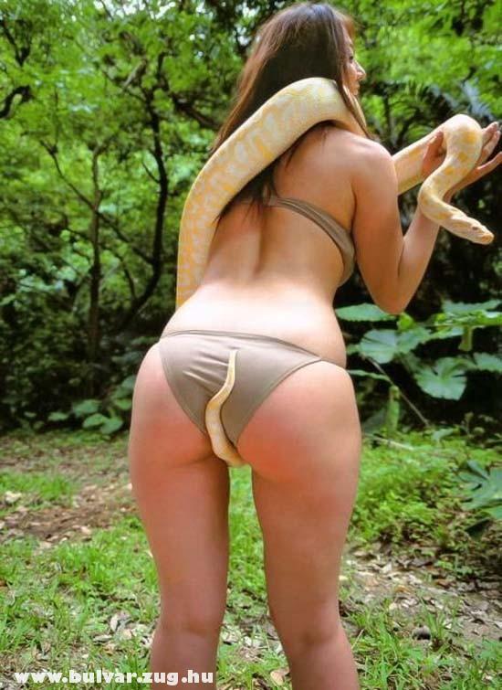 Kígyóval masztizik