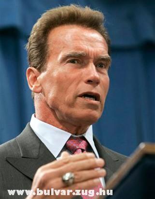 Arnold a politikus