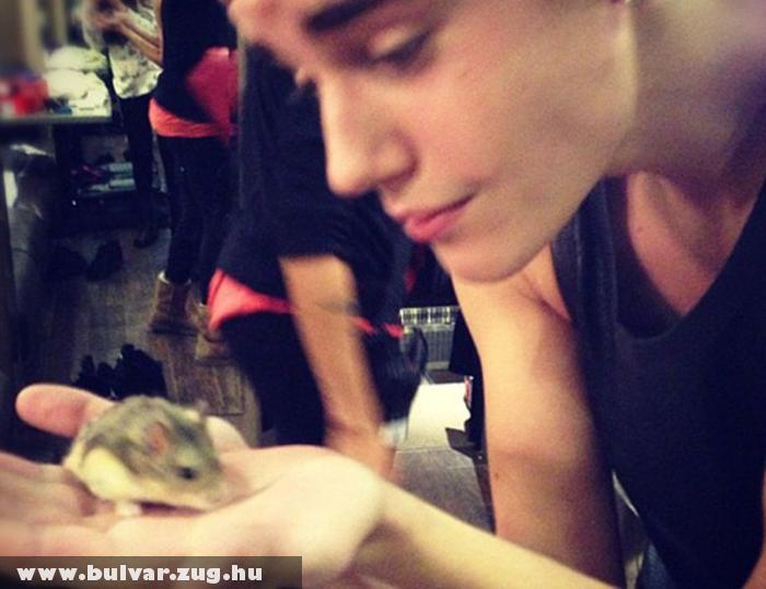 Justin Bieber hörcsögét gyászolja