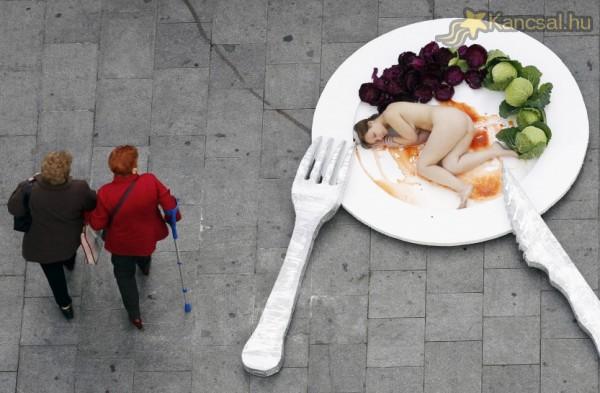 Vegetáriánus kampány